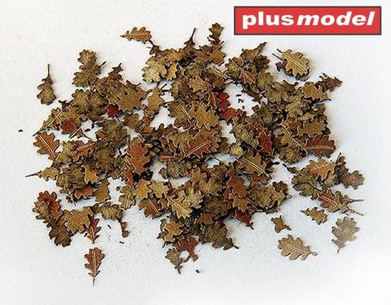 Listí - dub