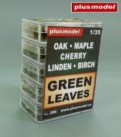 Zelené listí-set