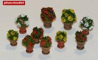 Květiny v květináčích