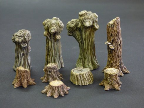 Willows and stumps